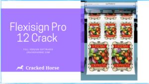 Flexisign Pro 10 Crack