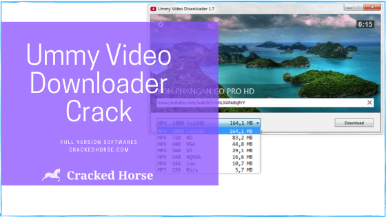 Ummy Video Downloader crack - serial key
